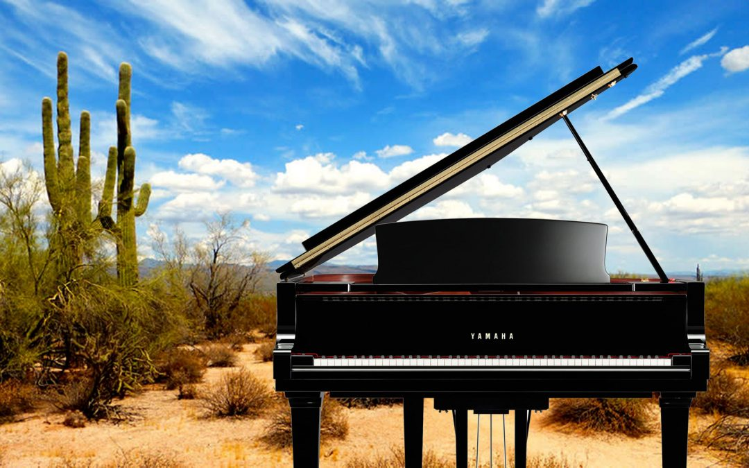 Should You Put a Humidifier System on Your Piano?